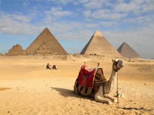 Tarpaulin Supplier in Eqypt