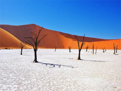 Tarpaulin manufacturer in Namibia