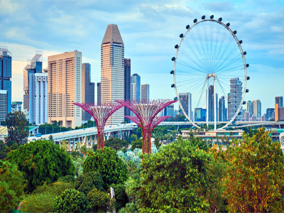 Economics Of Vermi Bed in singapore