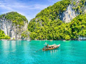 Vermiwash in thailand