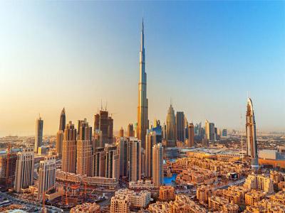 Vermiwash UAE
